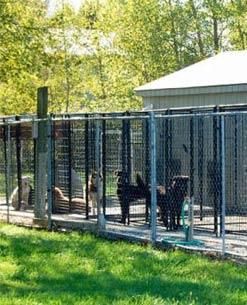 A Indústria de Telas Ramacrisna dispõe de telas, alambrados e cercas para o canil do seu cachorro. Proteja seu cão e fique tranquilo com as Telas Ramacrisna.